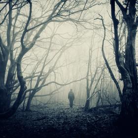 Przerażający las wokół Wysokiego Kamienia