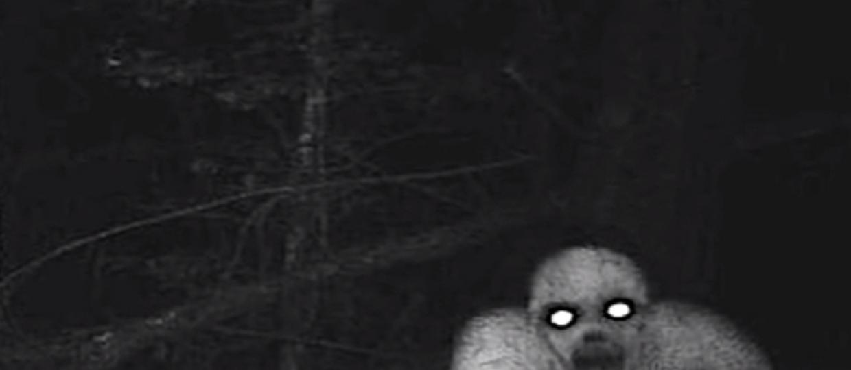 Rake Przerażający Potwór Który Odwiedza Cię W Nocy Kim