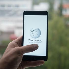 Top 7 strasznych haseł w Wikipedii.