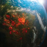 Ziemia się przegrzewa