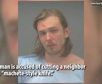 """Mężczyzna groził sąsiadom, że zabije ich """"dobrocią"""". Okazuje się, że tak nazwał swoją maczetę"""
