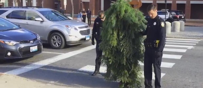 Przebrany za drzewo blokował drogę