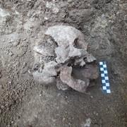Archeolodzy znaleźli szkielet wampira-dziecka z V wieku