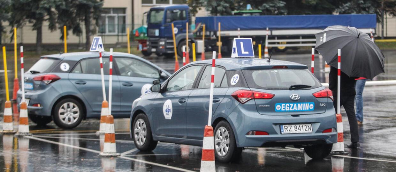 Doradca ministra infrastruktury chce, by kierowcy powtarzali egzamin teoretyczny na prawo jazdy co 12 miesięcy [AKTUALIZACJA]