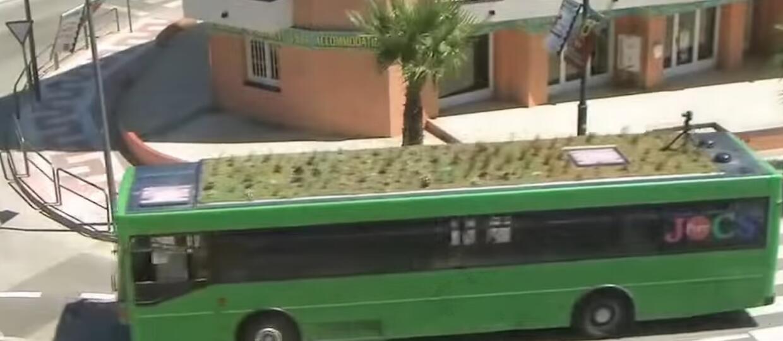 Ogrody na dachach autobusów