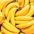 W polskich sklepach znaleziono ponad 9 kilogramów kokainy. Była ukryta w kartonach z bananami