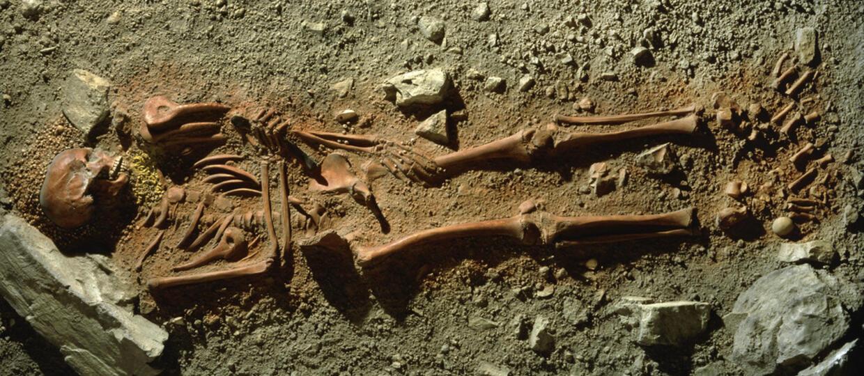 Znaleziono najstarsze zwłoki dziecka w Polsce. Zostało zjedzone przez wielkiego ptaka