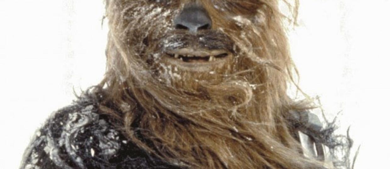 Chewbacca życzy Wam wesołych Świąt!