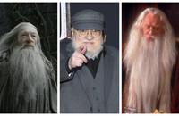 Gandalf, George R.R. Martin, Dumbledore