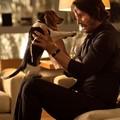 Keanu Reeves (John Wick)