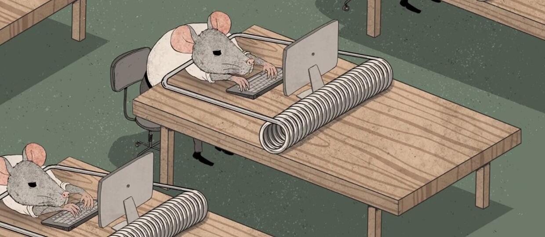Znalezione obrazy dla zapytania szczury korpo