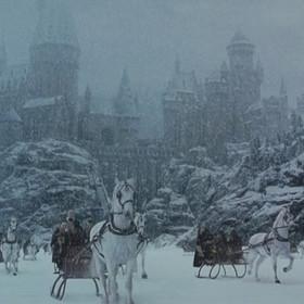 Mężczyzna zrobił dla swoich córek lodowy Hogwart