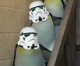 """Pingwiny szturmowcy kroczą w rytm """"Marszu Imperialnego"""""""