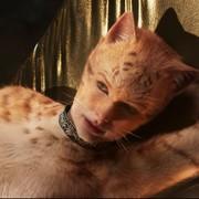 Taylor Swift w musicalu Koty