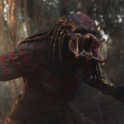 foto: Predator
