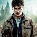 Daniel Radcliffe (Harry Potter i Insygnia Śmierci)