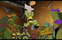 Wojownicze Żółwie Ninja będą w nowym serialu weganami?