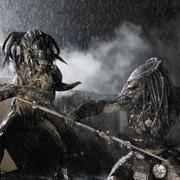 """""""Alien: Covenant"""" i """"The Predator"""" z datami premier"""