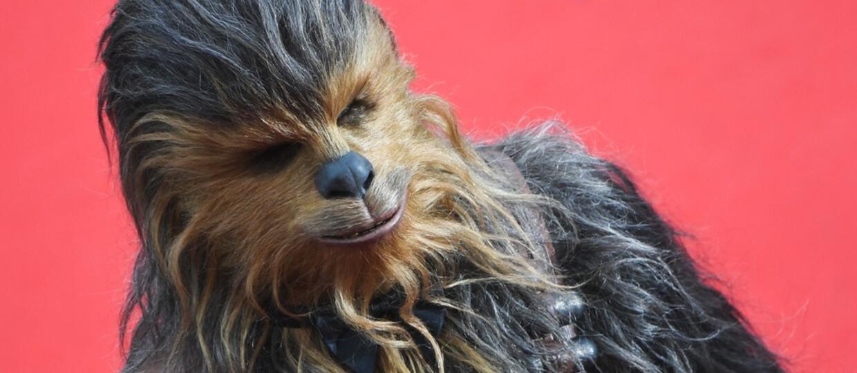 """Czy Chewbacca zjadał ludzi? Zagadka z filmu """"Solo"""" rozwiązana"""