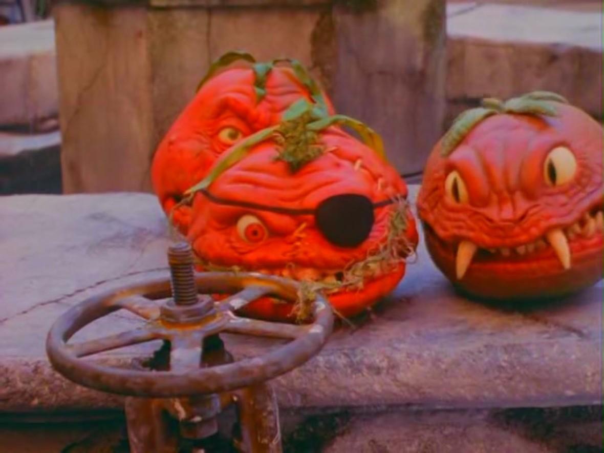Atak pomidorów zabójców