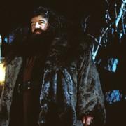 Hagrid Fantastyczne zwierzęta