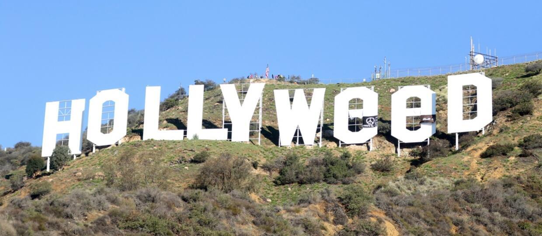 Hollywood zmieniło się w Nowy Rok w Hollyweed
