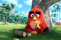"""Międzynarodowy Dzień Szczęścia z """"Angry Birds"""""""