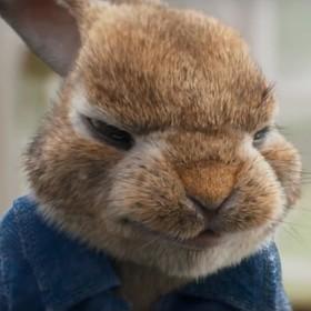 Sony Pictures przeprasza za obraźliwą scenę w animacji o Piotrusiu Króliku