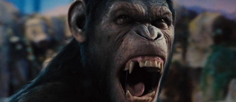 kadr z filmu Ewolucja planety małp