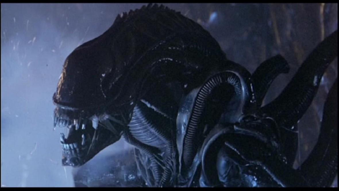 """Ridley Scott: Mogę zrobić jeszcze 6 części """"Obcego"""""""