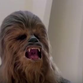 """Tak będzie wyglądać Chewbacca w filmie """"Han Solo"""""""