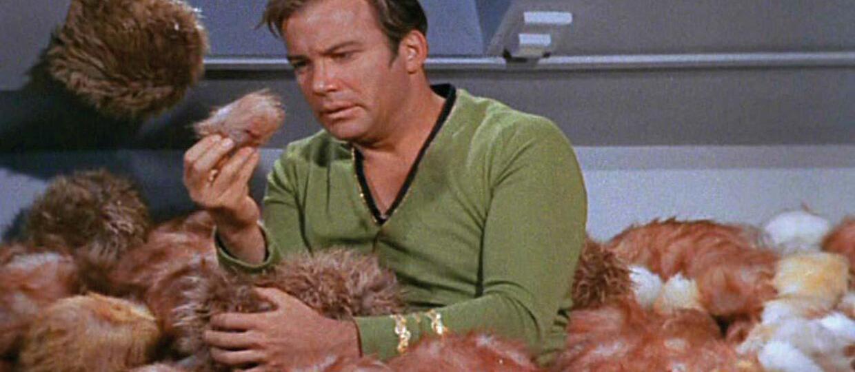 "Puchate Tribble powracają w serialu ""Star Trek: Discovery"""