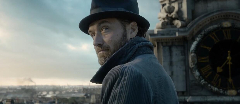 Jude Law jako Albus Dumbledore