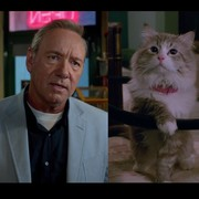 Kevin Spacey będzie kotem