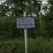 Wiedźma z Blair straszy w lesie w 360 stopniach