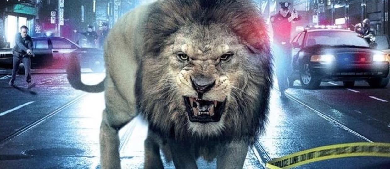 Atak krwiożerczego lwa – zobacz przerażające wideo