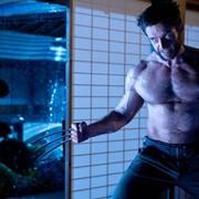 Hulk versus Wolverine – kto zwyciężyłby w takim starciu? Hugh Jackman udziela konkretnej odpowiedzi