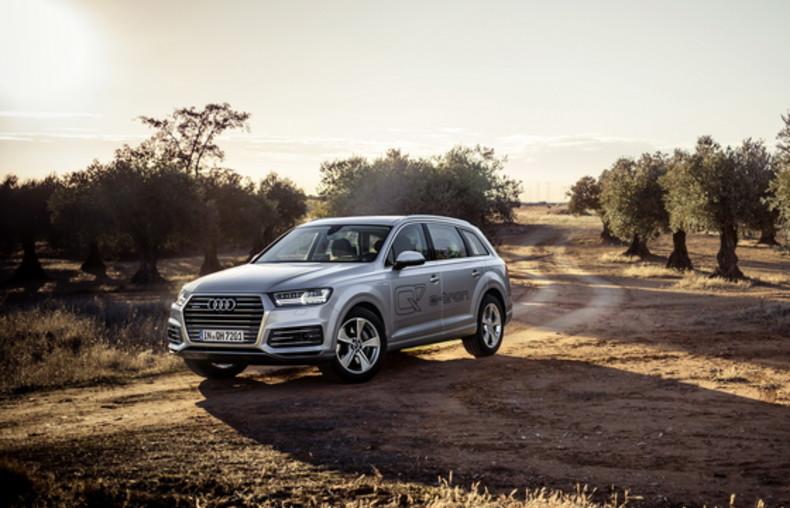 Audi Q7 e-tron 1/30