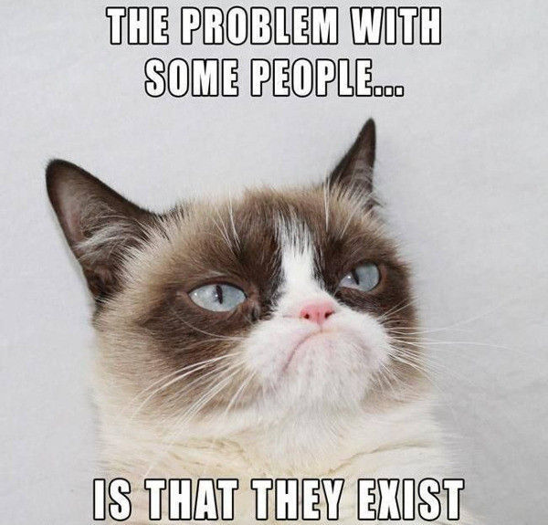 Grumpy Cat Memy