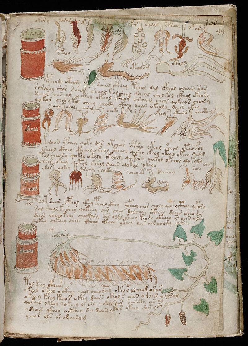 Rękopis Wojnicza