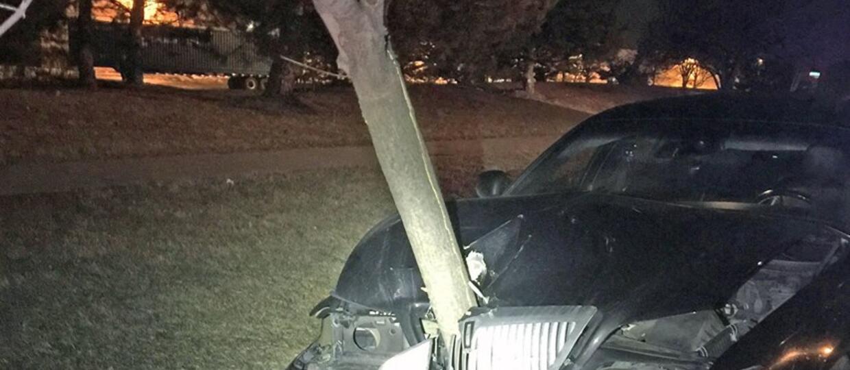 Pijana wiozła 4,5-metrowe drzewo w komorze silnika