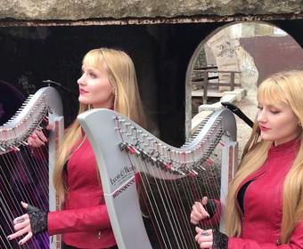 Harfistki w coverze Dio