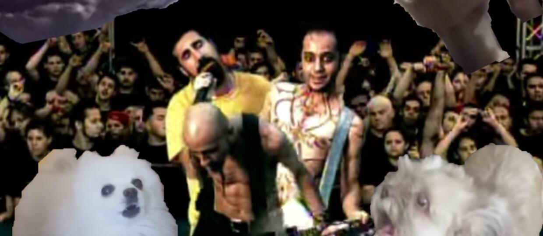 """""""Chop Suey!"""" System of a Down w zwierzęcym coverze"""
