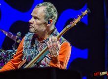 Czy wiesz wszystko o Flea z Red Hot Chili Peppers? [QUIZ]