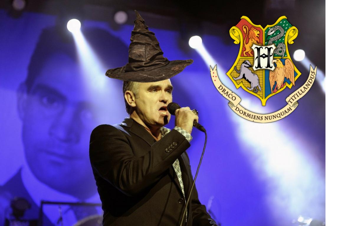 Do jakich domów Hogwartu trafiłyby gwiazdy muzyki?