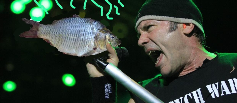 Heavy metal śmierdzi rybą?