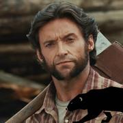 """Hugh Jackman: Przed serią """"X-Men"""" nie wiedziałem, że jest takie zwierzę jak rosomak"""