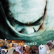 Jak brzmi utwór Disturbed w zwierzęcym coverze?