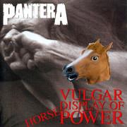 Konie uprawiają headbanging do utworu Pantery
