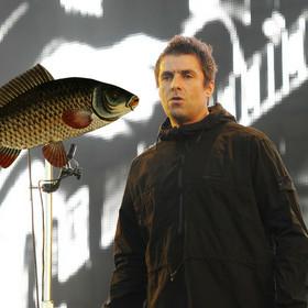 Liam Gallagher przerwał koncert, bo ktoś rzucił na scenę rybę
